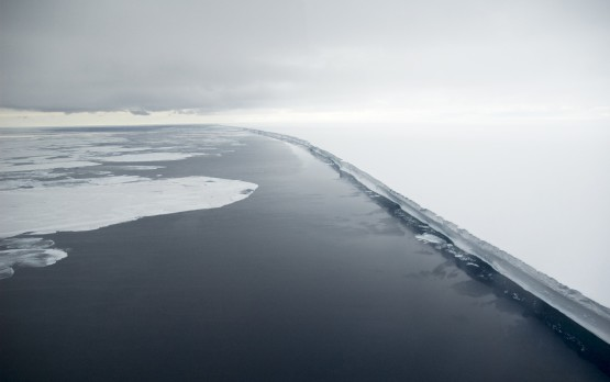 ross_sea_ross_ice_shelf_©_Delphine_Aures-Oceanwide-Expeditions-555x348