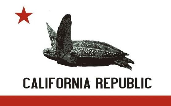 leatherback-ca-flag-oceana-555x344